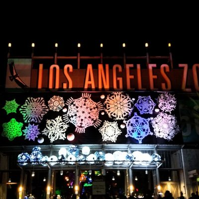 LA Zoo Lights: A dazzling immersive display