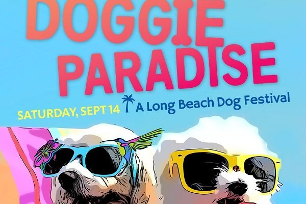 Pamper, Play, Adopt, and Learn at the Queen Mary's Doggie Paradise